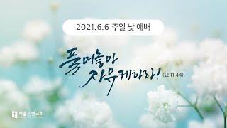 [서울은현교회] 6월 6일 주일 예배 실황