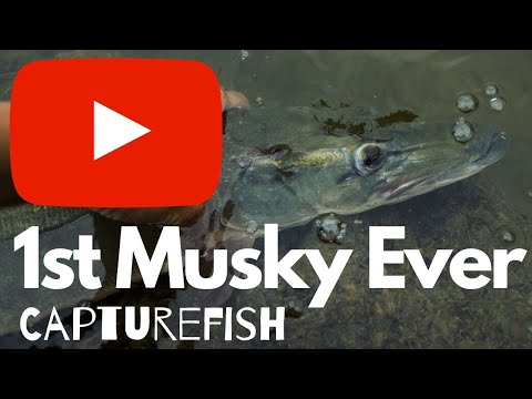 1st Musky Ever! Ohio Fishing (Lake Milton)