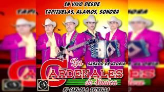 Popurri Rancheras - Los Cardenales De Sinaloa (Album En Vivo 2016)