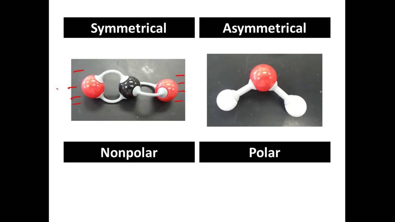 Polar And Non Polar Covalent Molecules Polar Vs Nonpolar Clear
