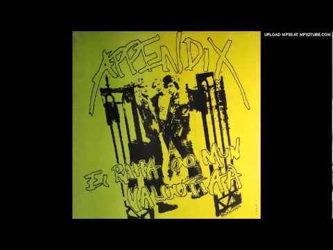 Appendix - Ei Raha Oo Mun Valuuttaa