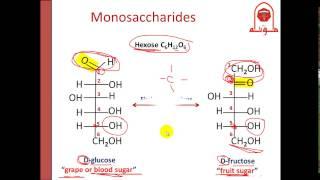 Biochem (Second) - dr. Nisreen -- Carbohydrate (1) الجزء الأول