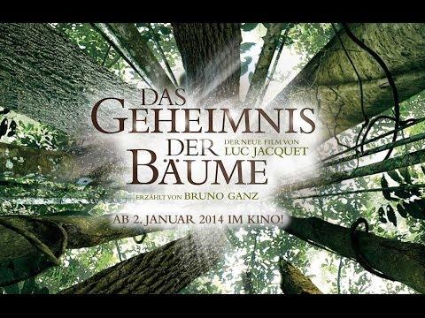 Das Geheimnis der Bäume | Offizieller Trailer Deutsch HD | Luc Jacquet