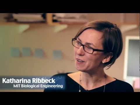 Chemistry in Action: Katharina Ribbeck