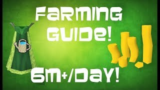 Runescape 3: ULTIMATE Farming Guide 6M+/Day! 2017 Money Making Guide
