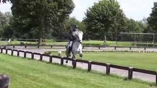 Bragi fra Austurkoti - Andreas Trappe. T1 Preliminary Nederlandse K...