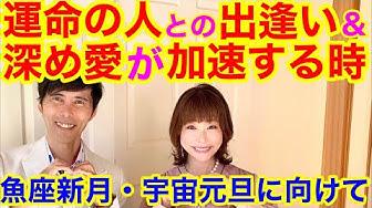 ユーチューブ 田宮 陽子 山本陽子の現在は熱海で終活?若い頃や恋人2人の自殺!結婚はしている?