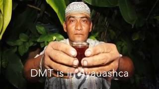 Tantra and DMT - sex and spirit