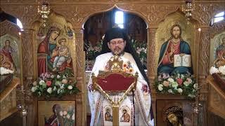 predica parintelui david duminica 12 noiembrie 2017