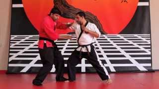 Street Fighting Using Traditional Martial Arts: Part 1 Ussd