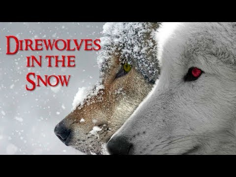 Importance Of The Direwolves Of House Stark | Game Of Thrones
