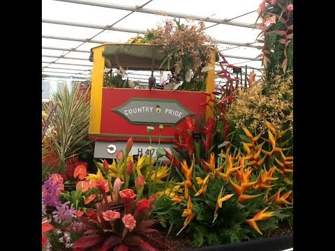 Grenada Wins the Chelsea Flower Show Again!