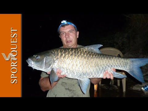 WORLD RECORD Mahseer Fishing On The Cauvery River 130lb