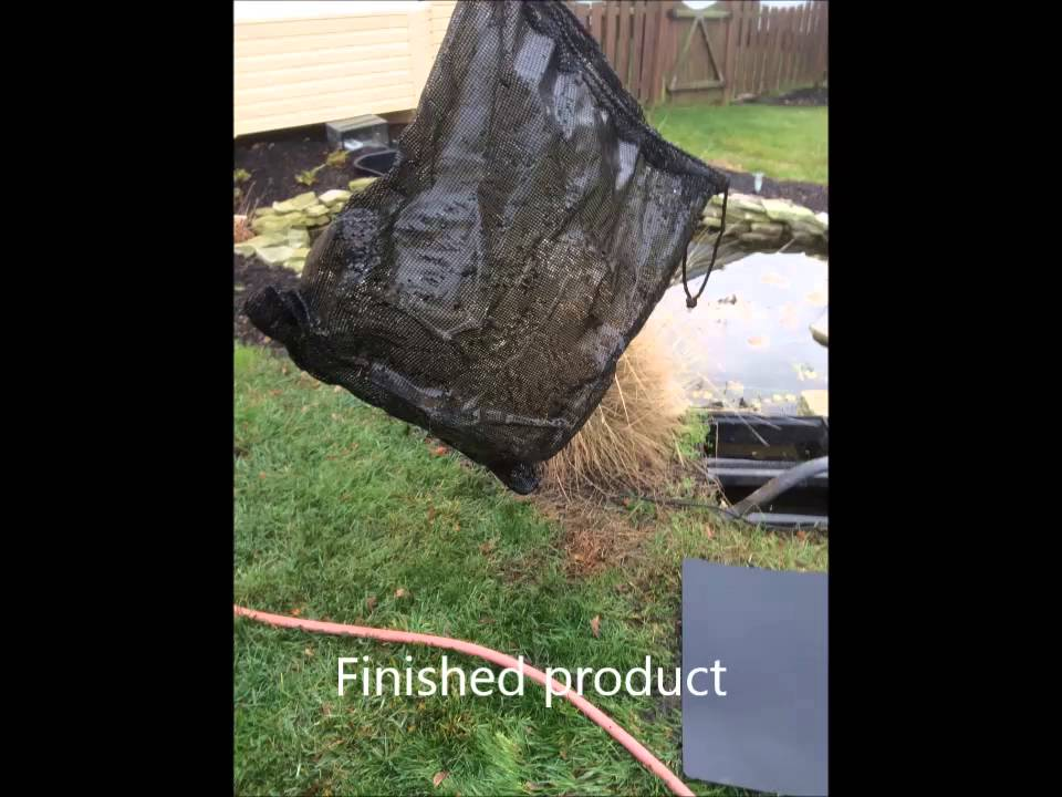 Backyard fish pond maintenance! - YouTube