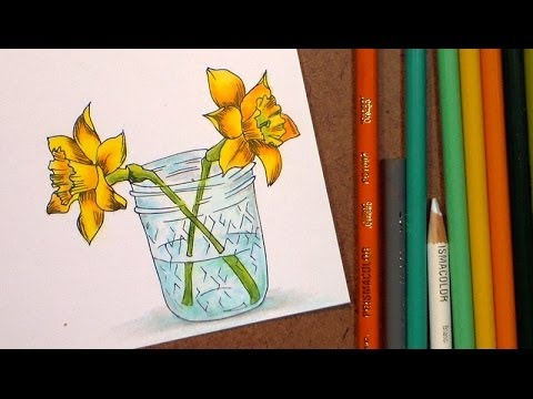 how to color daffodils with colored pencil and markers - youtube