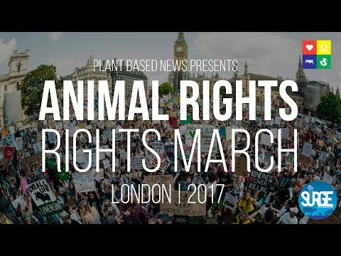 Plant Based News Presents: The FILM for the London Animal Ri