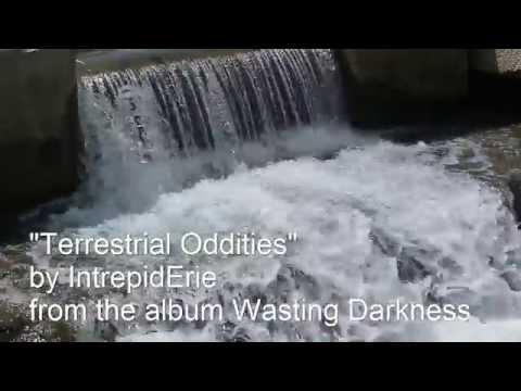"""Terrestrial Oddities"" by IntrepidErie"