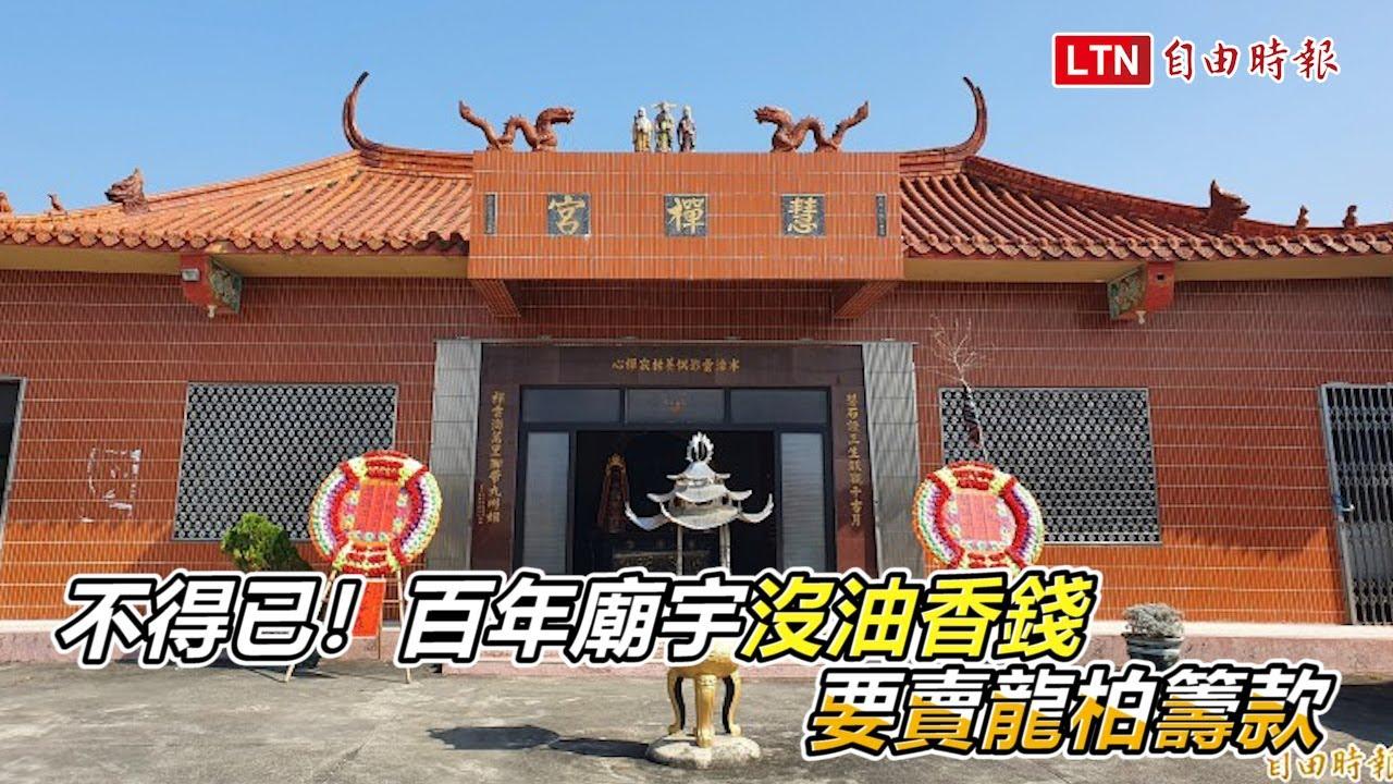 不得已!台南偏鄉百年廟宇沒油香錢 要賣龍柏籌款