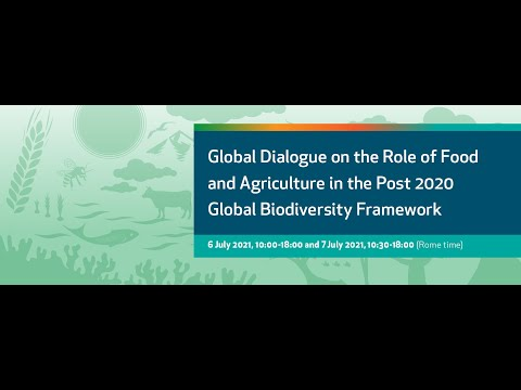 Global Dialogue: Food and agriculture in the Post 2020 Global Biodiversity Framework 4