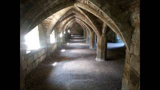 THE DEEPEST DARK GOTHS OF WHITBY VISIT FINCHALE ABBEY (PRIORY) DURHAM UK
