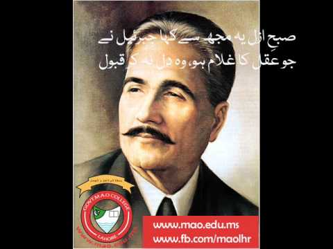 Best Poetry of Allama Muhammad Iqbal