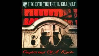 "My Life With The Thrill Kill Kult "" A Daisy Chain for Satan"""