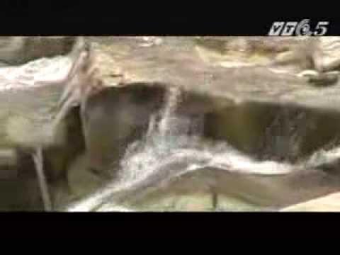 Bí mật Tần Thủy Hoàng - Phần 1 - The secret of Tan Thuy Hoang- Part 1 (Vietsubs)