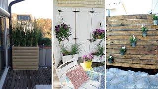 10 DIY Backyard Privacy Screen Ideas