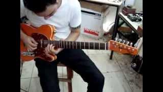 Ebrom telecaster custom - Luthier Patos de minas
