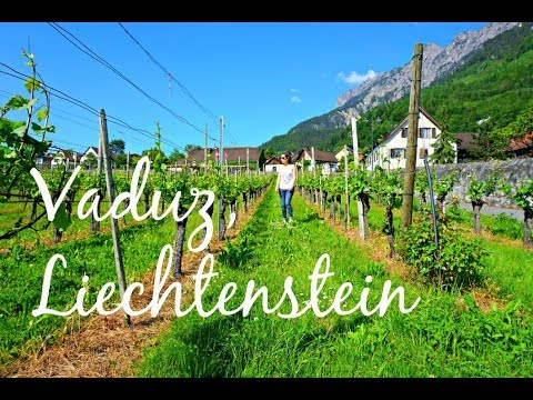 Zurich to Liechtenstein Day Trip: Things to Do in Vaduz