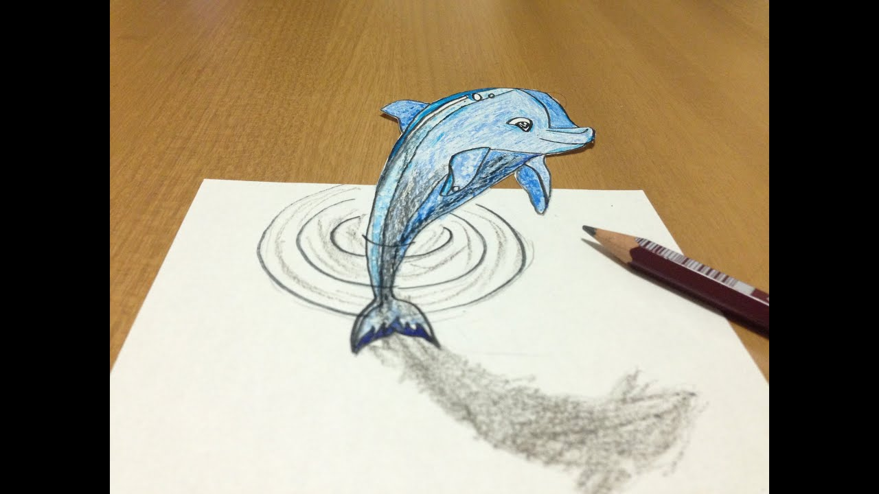 Dolphin illusion picture impremedia 3d dolphin drawing tricks art illusion reviewsmspy