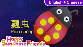 Colors for kids | Pink + blue + yellow | 中文+ English | 颜色 | 粉色 and 蓝色 and 黄色