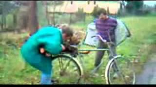Drunk Hungarians put a tree on a bike