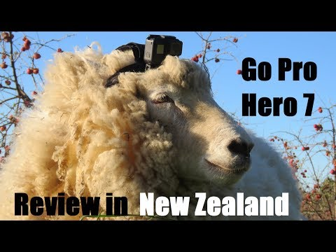 Go Pro Hero 7 Black Review in NZ - Clay Tallstories
