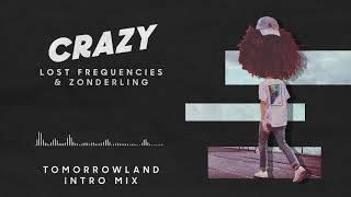 Lost Frequencies - Crazy Tomorrowland Intro Mix