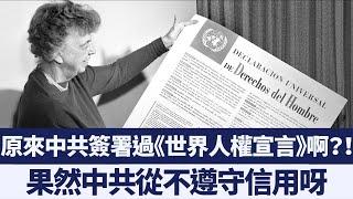 《世界人權宣言》也是歷史文件?美國再批中共侵犯人權|新唐人亞太電視|20191211