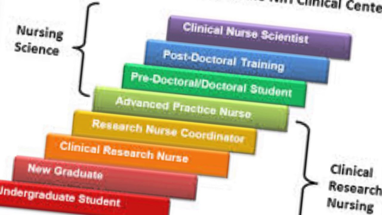 nursing profession essay top ideas about professional nurse  nursing research terms the importance of research to the nursing profession the importance of research to