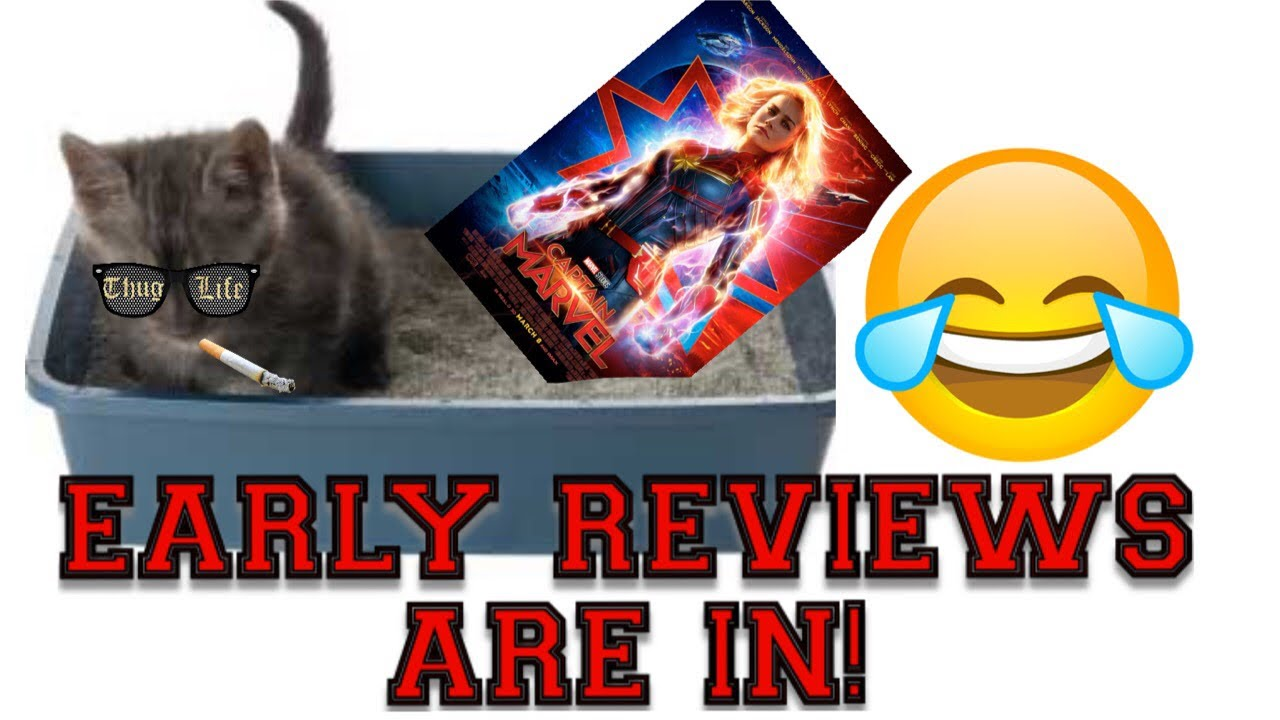 early screening reviews captain marvel: tabby cat excretes more charm than  brie larson