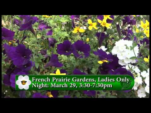 Ladies Only Night - YouTube
