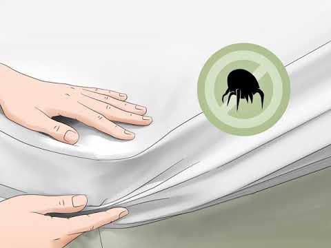 get-rid-of-dust-mites-in-your-mattress