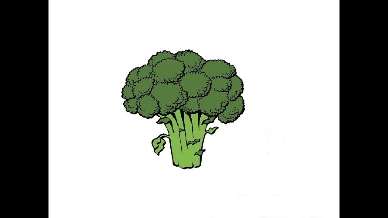 How to Draw a Broccoli / Как нарисовать Брокколи - YouTube
