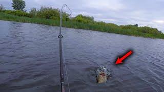 Такой рыбалки мы не ожидали Клюет на каждом забросе Рыбалка на спиннинг