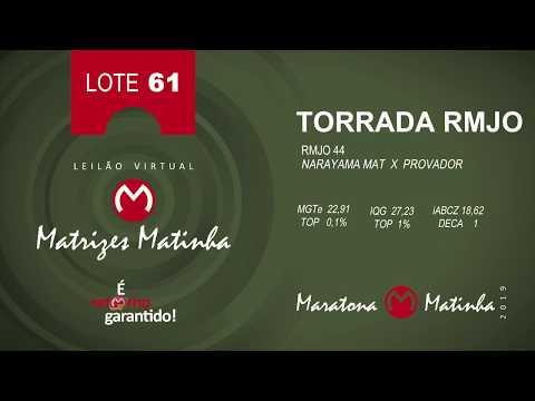 LOTE 61 Matrizes Matinha 2019
