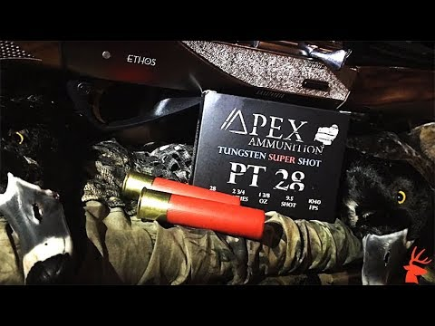 AH Exclusive: Apex Ammunition TSS Loads