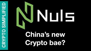 NULS - Taking Neo's place as the Chinese government's favourite enterprise blockchain?