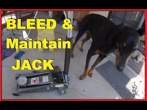 How To Bleed & Maintain Hydraulic Floor Jack -Jonny DIY