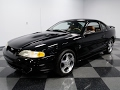 3875 CHA 1996 Ford Mustang Cobra