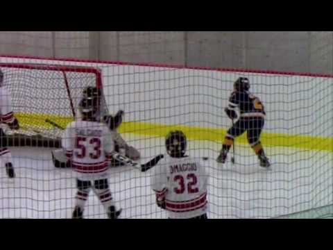 01-14-17 Naperville Sabres Squirt 3's vs Rolling Meadows Renegades