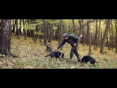 Tracker - Hunters' First Choice Trailer For The Most Advanced (dog) Tracking System