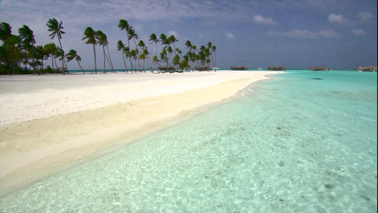 beach live wallpaper - youtube